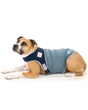 sudaderas para perros marca Gobak